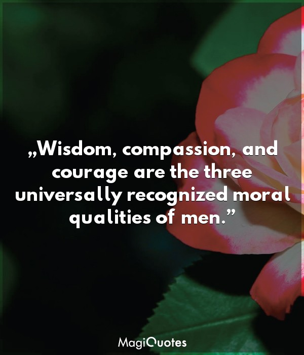 Wisdom, compassion, and courage