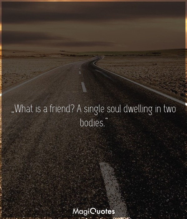 What is a friend? A single soul dwelling in two bodies