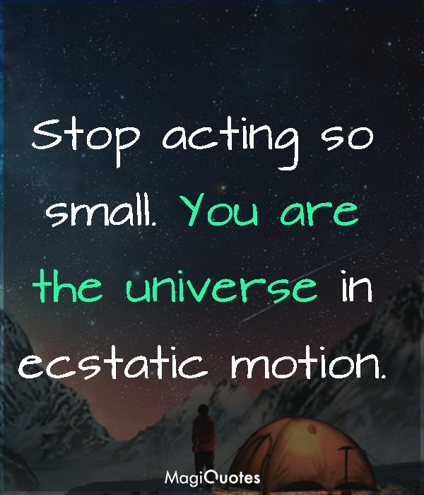 You are the universe in ecstatic motion