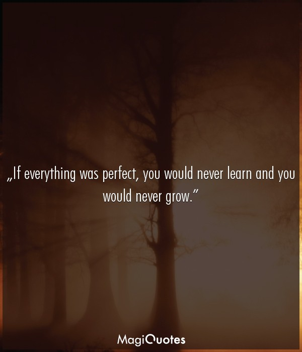 If everything was perfect, you would never learn and you would never grow