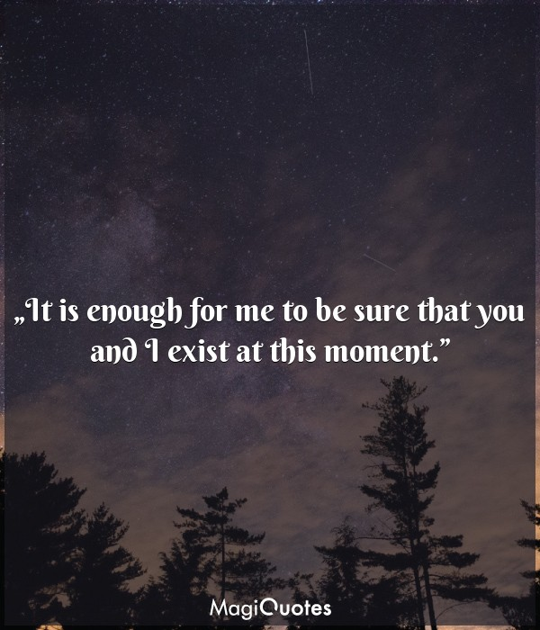 It is enough for me to be sure that you and I exist at this moment