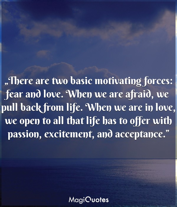 There are two basic motivating forces: fear and love