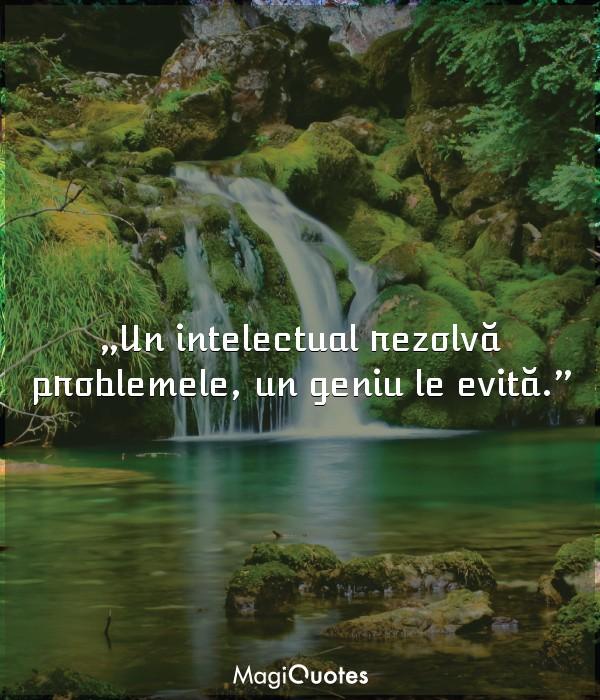 Un intelectual rezolvă problemele, un geniu le evită