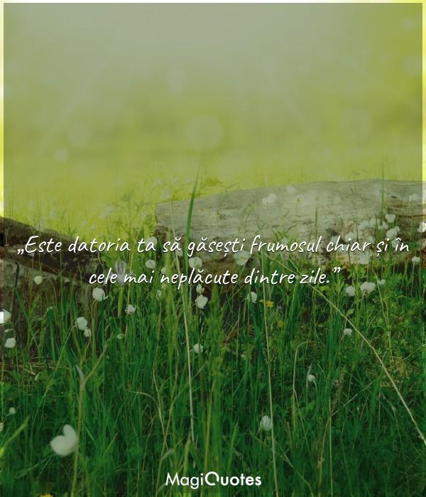 Este datoria ta să găsești frumosul