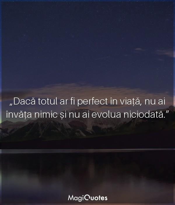 Daca totul ar fi perfect in viata
