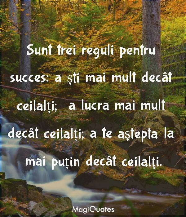 Sunt trei reguli pentru succes