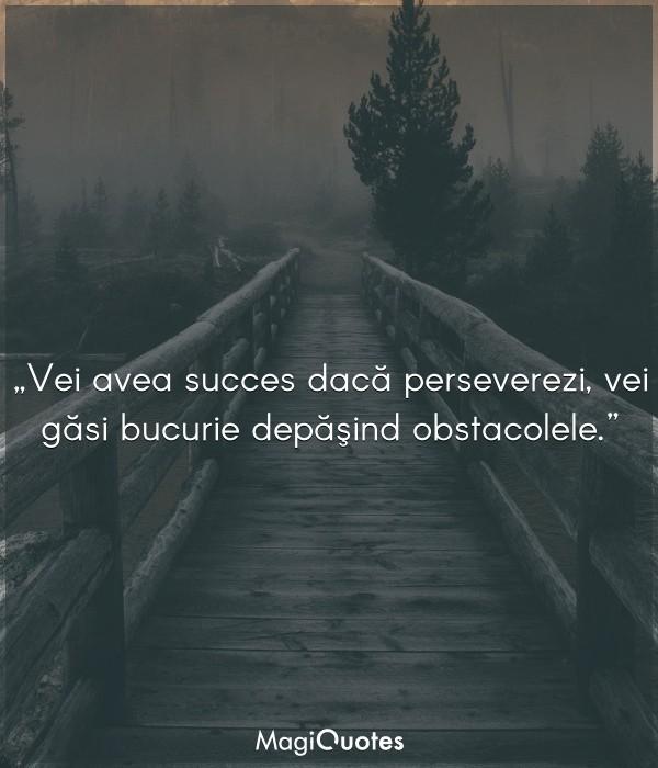 Vei avea succes dacă perseverezi