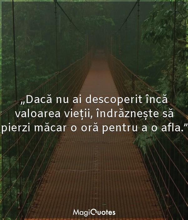 Dacă nu ai descoperit încă valoarea vieții