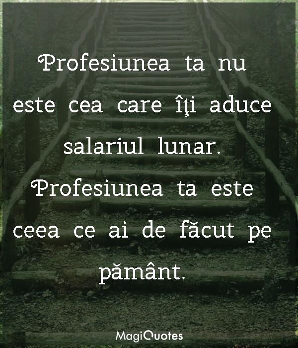 Profesiunea ta este ceea ce ai de făcut pe pământ